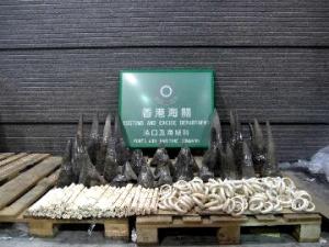 Rhino horn bust, Hong Kong Customs