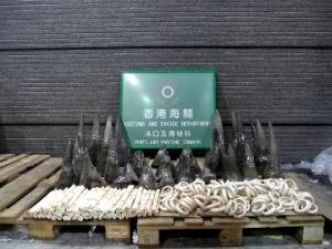 Rhino horn bust, Hong Kong Customs