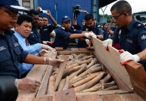 Malaysian Customs officers uncovered illegal ivory concealed within secret compartments in a shipment. (Getty Images)