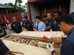 What's that? A secret compartment! Smugglers went to great lengths to hide the 1,500 pieces of Elephant tusks they were transporting from Togo to China via Malaysia.