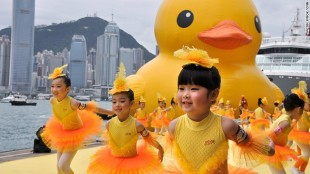 a0813_130502154034-rubber-duck-in-hong-kong-7-horizontal-gallery