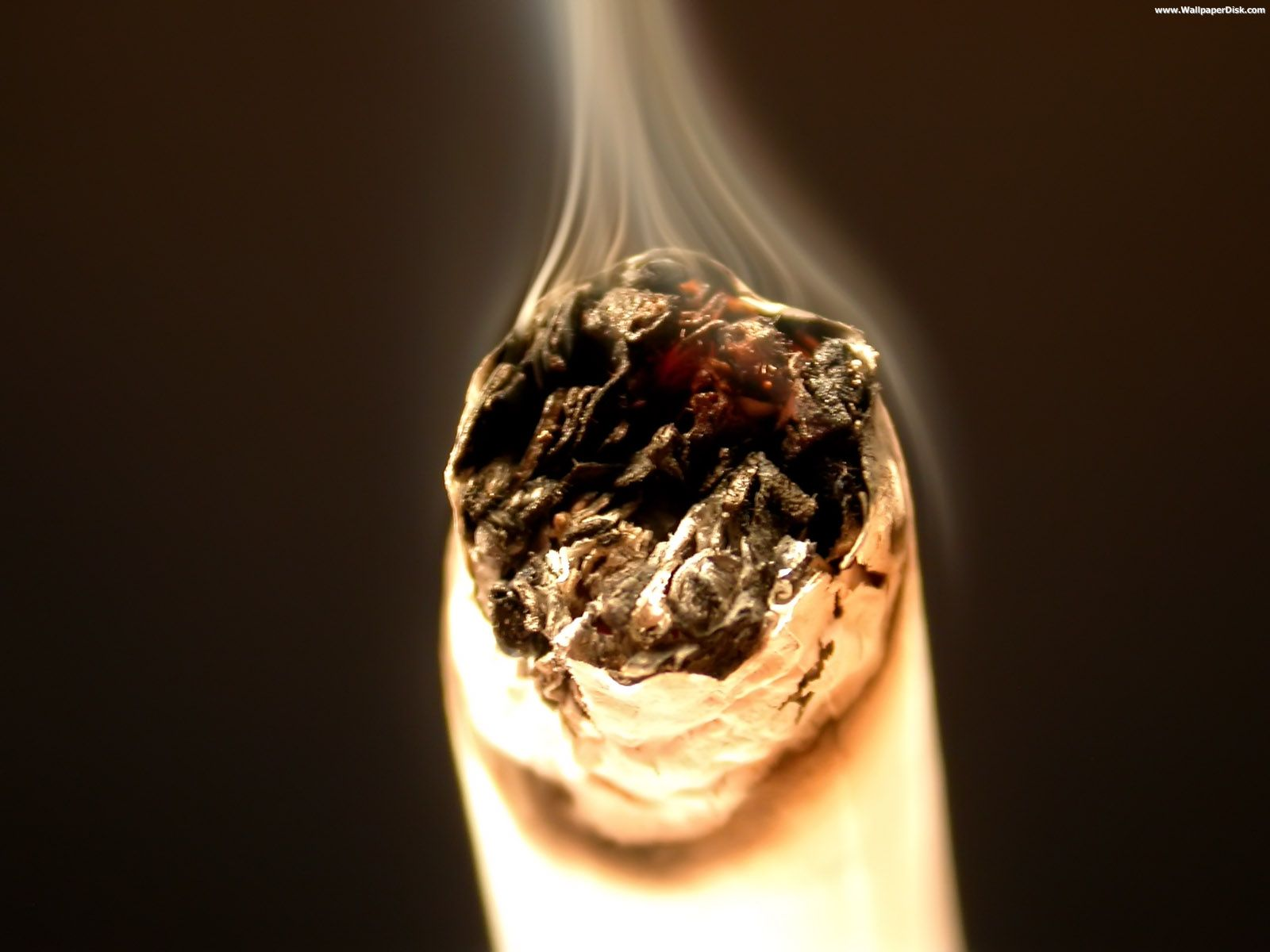 Buy cigarettes Glamour online
