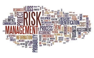 risk management montage