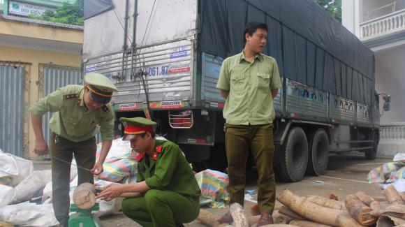 Vietnam-Ivory