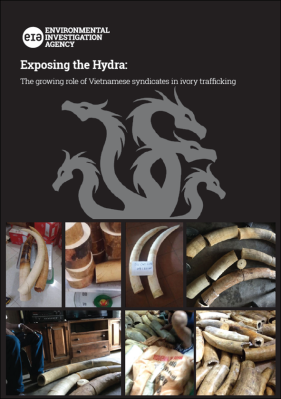 Exposing the Hydra - Ivory